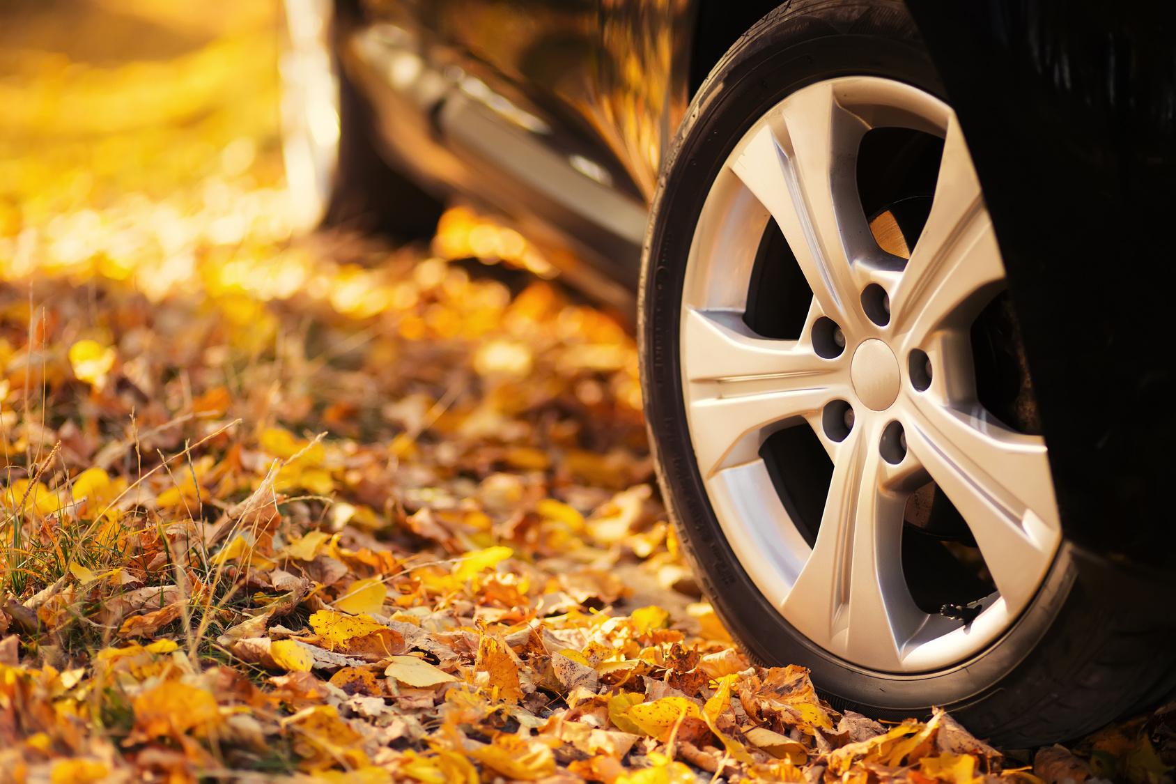 Интернет-провайдер в Красноярске рассказывает: 7 нюансов, о которых водителям нужно помнить осенью
